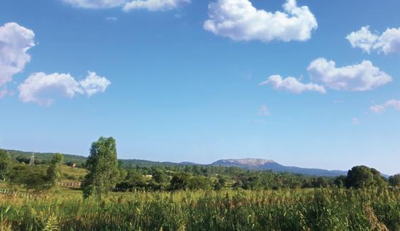Sunland Ventures_Serene Hills